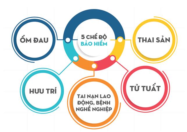 các chế độ bảo hiểm xã hội - nguồn: http://baohiemxahoi.edu.vn/bao-hiem-xa-hoi-tieng-anh-la-gi/